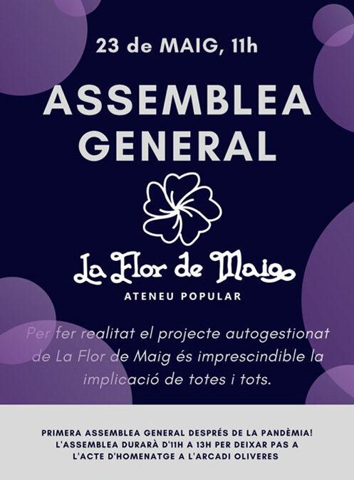 Assemblea General